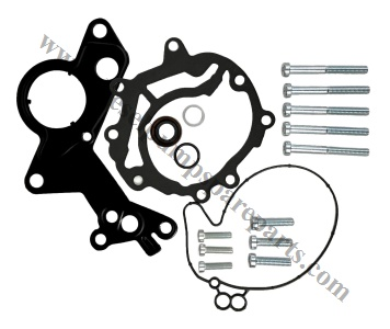 038145209M Vacuum Pump Repair Kit