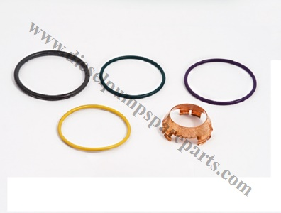 1441237 Scania R Series Unit pump Repair Kit